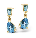 9K Yellow Gold Blue Topaz Earrings From Catalina Diamonds F2036